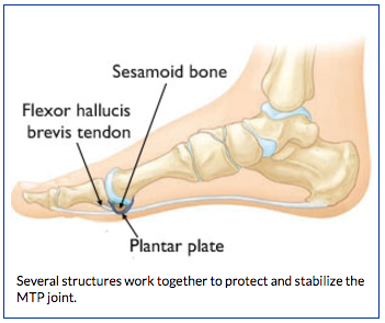 Anatomy of Turf Toe | BoulderCentre for Orthopedics